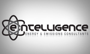 Graphic Design for E-ntelligence Consultants